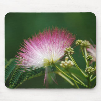 Pretty Pink Mimosa flower Mouse Pad