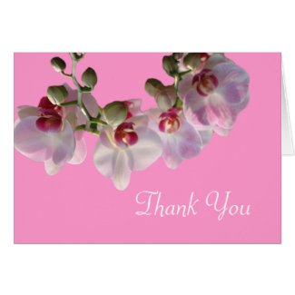 pretty pink orchid flowers pink thank you greeting cards