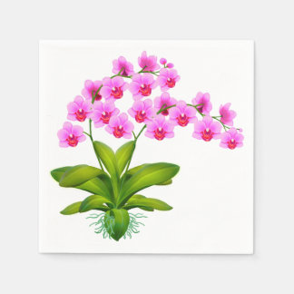 Pretty Pink Phalaenopsis Orchid Flowers Napkin