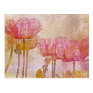 Pretty Pink Poppies Watercolor Postcard