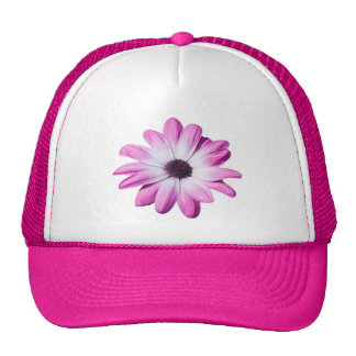 Pretty pink, purple daisy flower hat, cap, gift trucker hat