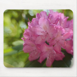Pretty Pink Rhododendron Mouse Pad