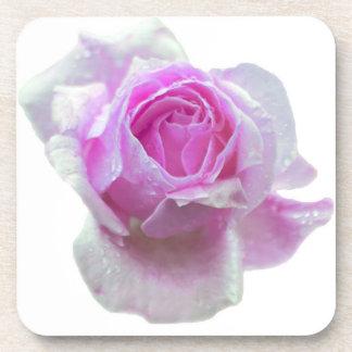 Pretty pink rose coaster