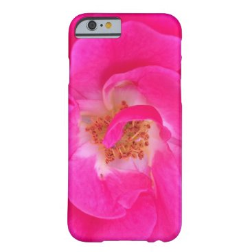 Beach Themed Pretty Pink Rose iPhone 6 Case
