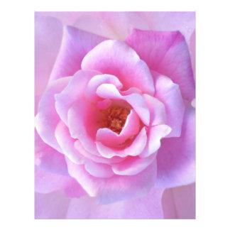 Pretty Pink Rose Letterhead