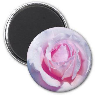 Pretty Pink Rose Magnet