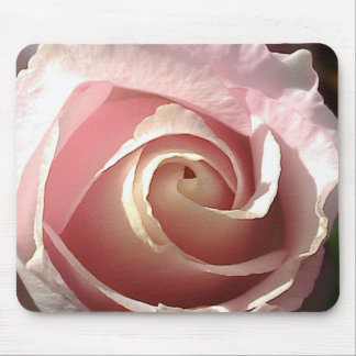 Pretty pink rose mouse pad