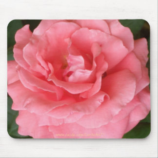 Pretty Pink Rose Mouse Pads