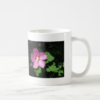 Pretty Pink Rose Of Sharon Flower Classic White Coffee Mug