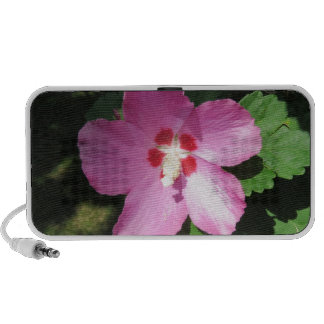 Pretty Pink Rose Of Sharon Flower Portable Speaker
