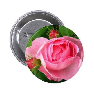 Pretty Pink Rose Pinback Button