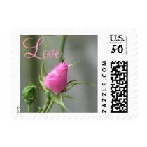 Pretty Pink Rose Postage