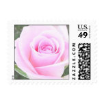 Pretty Pink Rose Postage