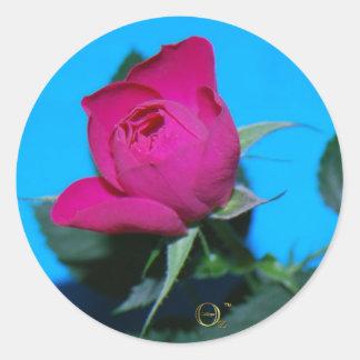 Pretty Pink Rose Round Stickers