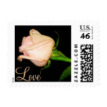 Pretty Pink Rose Stamp