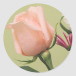 Pretty Pink Rose Stickers