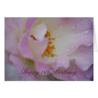 Pretty pink rose sweet 16 card