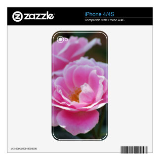 Pretty pink roses decal for iPhone 4