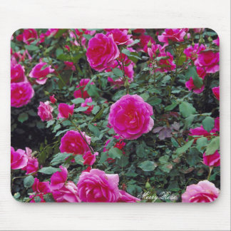 Pretty pink roses on bush mouse pad