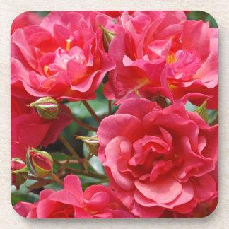 Pretty pink roses print coaster