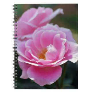 Pretty pink roses spiral notebook
