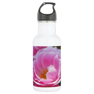 Pretty pink roses water bottle