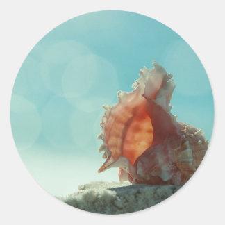 Pretty Pink Seashell Round Sticker