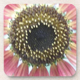 Pretty Pink Sunflower Cork Coaster