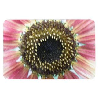 Pretty Pink Sunflower Premium Magnet