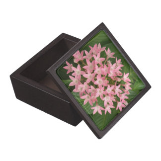Pretty Pink Tropical Flowers Premium Gift Box