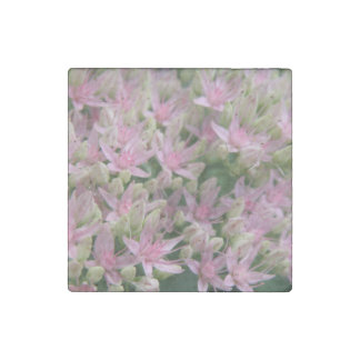 Pretty Pink Tropical Flowers Stone Magnet