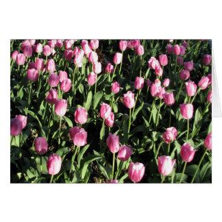 Pretty pink tulip garden card