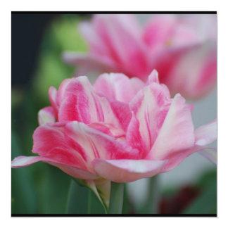 Pretty Pink Tulips 5.25x5.25 Square Paper Invitation Card