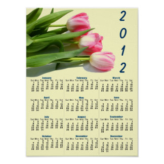 Pretty Pink Tulips Photo 2012 Wall Calendar Poster