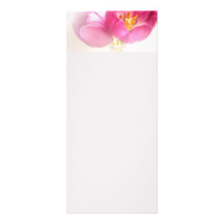 Pretty Pink Tulips Rack Card