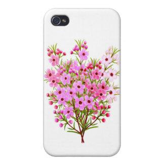 Pretty Pink Waxflower Bouquet iPhone 4 Case