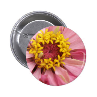 Pretty Pink Zinnia Button