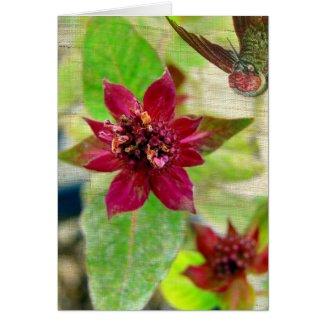 Pretty Plant 2 card