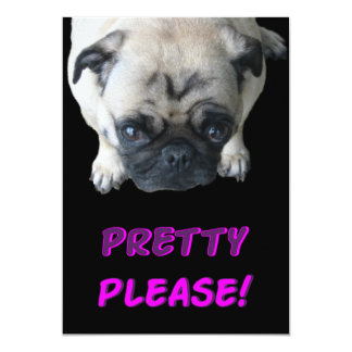 Pretty Please Pug Invitations