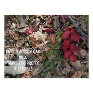 Pretty Poison Oak Warning Poster