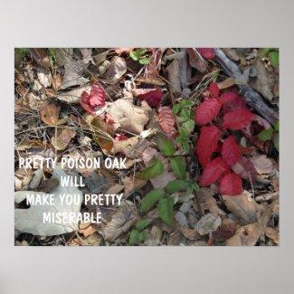 Pretty Poison Oak Warning Poster