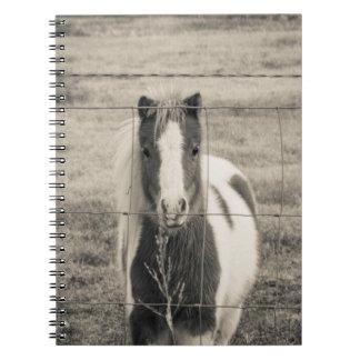 Pretty Pony Spiral Notebook