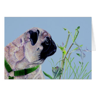 Pretty Pug & Nature Card