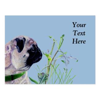 Pretty Pug & Nature Postcard