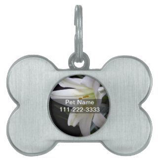 Pretty, pure white Easter lily flower in black Pet Tag