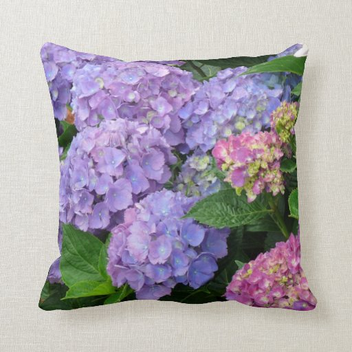 Purple And Pink Decorative Pillows : Pretty Purple and Pink Hydrangea Flowers Throw Pillow Zazzle