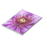 Pretty Purple Clematis Flower Memo Note Pads