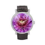 Pretty Purple Clematis Flower Watch