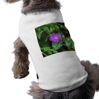 Pretty purple flower against dark background petshirt