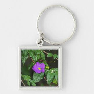 Pretty purple flower against dark background key chain